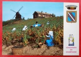 Cpsm Cpm 51 VERZENAY Anime  Le Moulin, Vendanges , Blason - Frankreich