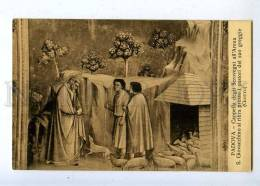 206893 St. Joachim Sheeps By GIOTTO Vintage Postcard - Illustrators & Photographers