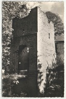 LAROCHETTE - Les Ruines Du Château - Grande Entrée - Larochette