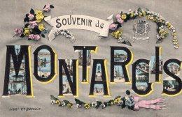 V14484 Cpa 45 Souvenir De Montargis - Malesherbes