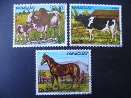 SERIE ANIMAUX FERME  VACHE COW  CHEVAL  HORSE - Cows