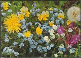 Wiesenblumen, 1992 - Gyger AK - Flowers