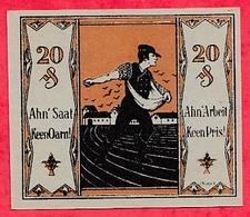 Allemagne 1 Notgeld  20 Pfenning Tonndorf Lohe Lot N °1738   Dans L' état - Collections