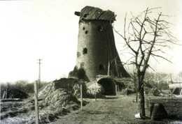 OEVEL Bij Geel  (Prov. Antw.) - Molen/moulin - De Stenen Molen In 1965 Met Oorlogsschade. Zeldzame Opname! - Geel