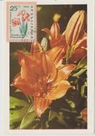 Bulgarie Carte Maximum Fleurs 1960 Lis 1020 - Briefe U. Dokumente