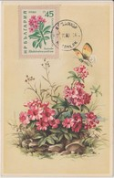 Bulgarie Carte Maximum Fleurs 1960 Rhododendrons 1021 - Briefe U. Dokumente