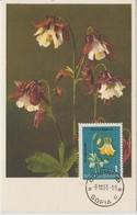 Bulgarie Carte Maximum Fleurs 1963 Ancolie 1208 - Briefe U. Dokumente