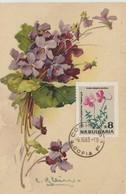 Bulgarie Carte Maximum Fleurs 1963 Violettes 1213 - Briefe U. Dokumente