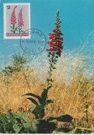 Bulgarie Carte Maximum Fleurs 1967 Digitale 1477 - Briefe U. Dokumente