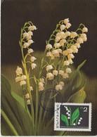 Bulgarie Carte Maximum Fleurs 1968 Muguet 1649 - Briefe U. Dokumente