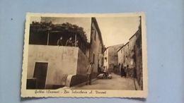 CARTOLINA GABBRO - BAR TABACCHERIA A. VINCENTI - Livorno