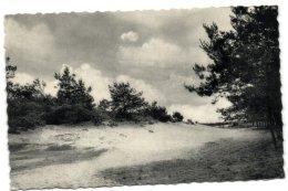 Retie - A.C.W. Vacantiehuis De Linde - De Kleine Duin - Retie