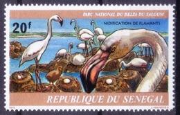 S4b- Senegal 1978 MNH, Greater Flamingo, Water Birds, Saloum National Park - Flamingo