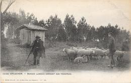 33 ARCACHON - Berger Landais Gardant Son Troupeau De Moutons - Arcachon