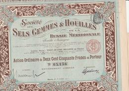 SOCIETE DES SELS GEMMES ET HOUILLES RUSSIE MERIDIONALE -ACTION 250 FRS -ANNEE 1911 - Mines