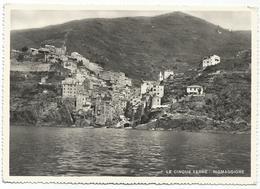 X2433 Riomaggiore (La Spezia) - Cinque Terre - Panorama / Non Viaggiata - Italie