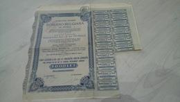 Société Anonyme Romano-Belge De Pétrole - Hist. Wertpapiere - Nonvaleurs