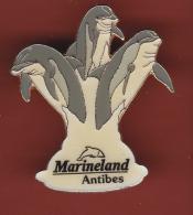 52858-Pin's.Marineland Antibes.Dauphins.signé JYS - Städte