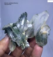 Minéraux Chlorite Du Pakistan Shardaku - Minerals