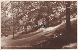 Yorkshire; Bradford. The Two Paths Heaton Woods. Real Photo Postcard - Bradford