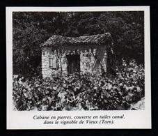 1980  --  CABANE EN PIERRES DANS LE VIGNOBLE DE VIEUX EN TARN    3P597 - Old Paper