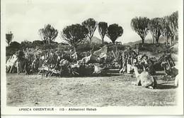 "823 "" AFRICA ORIENTALE-ABITAZIONI HABAB "" FOTOCART ANIM NON SPED. - Etiopia"
