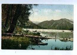232291 RUSSIA Altay ALTAI Rakhmanovskoe Lake Vintage Postcard - Russie