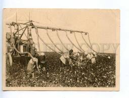 232654 USSR Kazakhstan Sovietcottonfarm Pakhta Aral Cotton OLD - Kazakhstan
