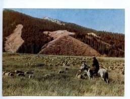 238943 Kyrgyzstan Alpine Meadows HORSEMAN Old Postcard - Kyrgyzstan