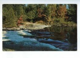 241183 CANADA ONTARIO Greetings From Red Rock Vintage Postcard - Ontario