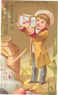 CHROMO CHICOREE A LA BELLE JARDINIERE C BERIOT à LILLE - LA PISCICULTURE   - BARA1 - - Tea & Coffee Manufacturers