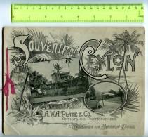255889 Souvenir Of CEYLON 12 POSTERS Vintage BOOK - Books, Magazines, Comics