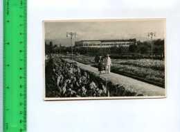 256151 USSR Kazakh SSR ALMA-ATA Square Of Flowers Old Photo PC - Kazakhstan