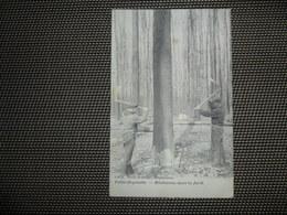 Beau Lot De 60 Cartes Postales De Belgique      Mooi Lot Van 60 Postkaarten Van België  - 60 Scans - 5 - 99 Karten