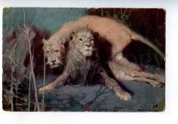 258641 NIGHT Wild Cats LION & Lioness Tade STYKA Russia LAPINA - Other Illustrators