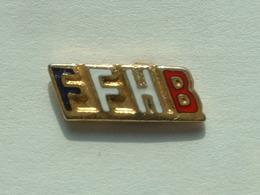 Pin's HANDBALL - FFHB - FEDERATION FRANCAISE DE HANDBALL - Handball