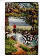 257448 Returning Home HUNT Horse POINTER Vintage TUCK #8778 PC - Illustrators & Photographers