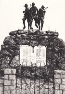 CARTOLINA - POSTCARD - TREVISO - FALZè DI PIAVE - MONUMENTO AI CADUTI - Treviso