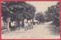 CPA - 83 - VAR - LE BRULAT - EMBRANCHEMENT DE LA CADIERE - France
