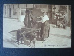 WENDUINE : Musique Ambulante Tirée Par Des Chiens In 1929 - Wenduine