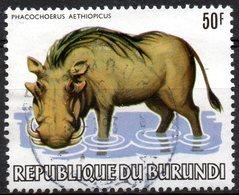 N° 886 Phacochère (sans Surcharge WWF) Oblitéré Used - Burundi