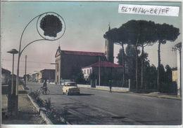 BOSCO MESOLA - Ferrara