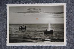 CANET PLAGE Au Lever Du Soleil ( Bel Affranchissement Au Verso) - Canet Plage