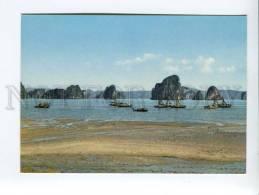 271717 VIETNAM Long Bay Boats Old Photo Postcard - Vietnam