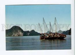 271718 VIETNAM Long Bay Fishing  Old Photo Postcard - Vietnam
