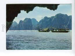 271719 VIETNAM Long Bay Boats Old Photo Postcard - Vietnam