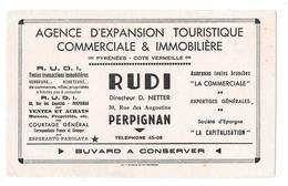 Buvard Ancien, AGENCE IMMOBILIERE RUDI -Directeur D.NETTER à PERPIGNAN - AGENCE D'EXPANSION TOURISTIQUE,COMMERCIALE,IMMO - Blotters
