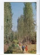 271982 USSR Azerbaijan Geokchaysky Landscape 1970 Year - Azerbaïjan