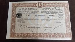 Action SOCIETE NATIONALE DES CHEMINS DE FER BELGES 25 Actions De Jouissance  Numéro : 013,523 - 1949 - Chemin De Fer & Tramway