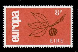 Ireland 1965 MNH Scott #204 8p Leaves And Fruit EUROPA - 1949-... République D'Irlande